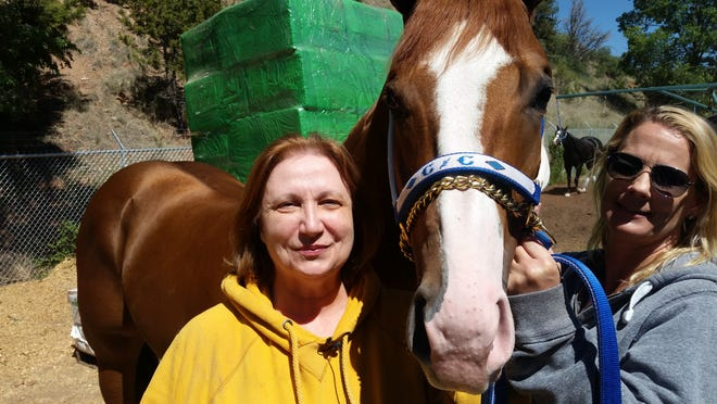 Good Candy P with trainer Renee Wilson of Crawford Barn.