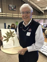 Dr. David Kramer holds a reserved specimen of aesculus glabra which he took from a flowering buckeye tree on the OSU-Mansfield campus. He shared the history of the buckeye tree as the state tree during the Northwest Ohio Tree City USA Awards event.