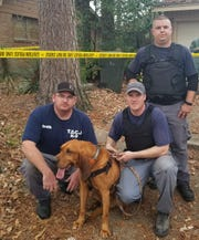 Raider, a bloodhound assigned to the Texas Department of Criminal Justice, tracked down the gunman who shot a woman to death in Liberty County, May 29, 2019.