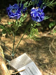 Flowers and a poem sit beneath a tree on the top of a cliff at Fort Dickerson's Augusta Quarry in South Knoxville. Several people have died cliff jumping in recent years.