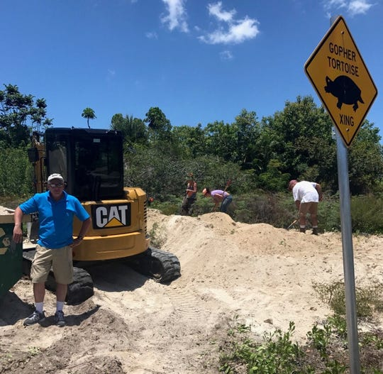 Volunteers remove excess sand on May 18 to help gopher tortoises self-excavate.