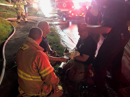 Newark firefighters attempt to revive a kitten, after it was rescued from a fire at 422 North Cedar Street late Tuesday night.