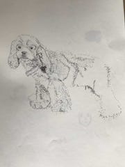 Shawn Shatto drew this sketch of her dog, Bailey. She never showed it to her family.