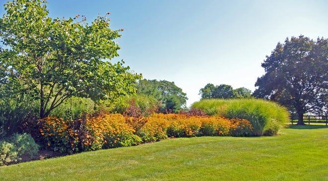 A pollinator garden.
