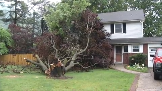 Thunderstorms knocked over trees, power lines and even tore the roof off a building in New Castle County.  Video provided by John J. Jankowski Jr.  5/29/19