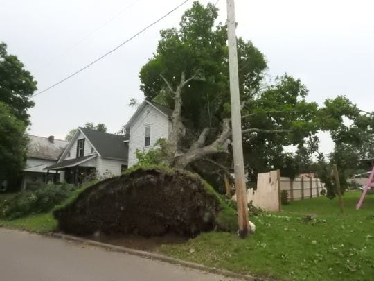 A large tree was uprooted on and landed on a home on Chaney Street in Roseville during Tuesday's storm.