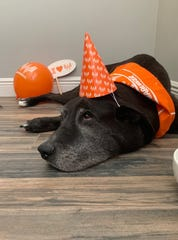 Stitch, 9, had a Whataburger-themed party before he died on Sunday, May 26, 2019.