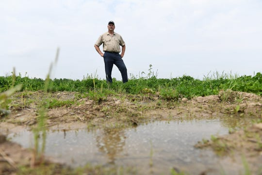 Jay Williams stands in one of his fields that is still too wet to plant corn on his farm of 1,350 acres in Waldron, Michigan on May 28, 2019.
