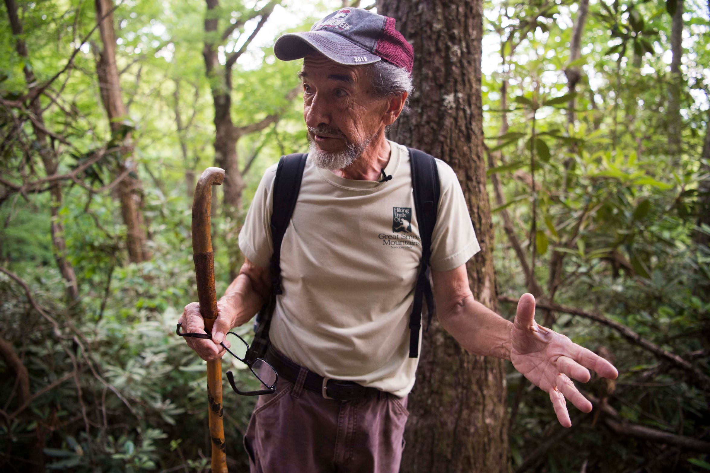 Dwight McCarter, a tracker and retired Great Smoky Mountains National Park ranger, hikes toward Spence Field where 6-year-old Dennis Martin disappeared and was never found June 14, 1969. McCarter was a young ranger during the search for the Knoxville boy, which remains the most massive in the park's history.