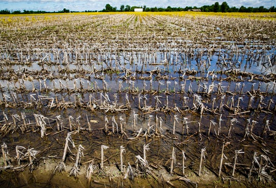 Flooding plagues agricultural areas north of Muncie.