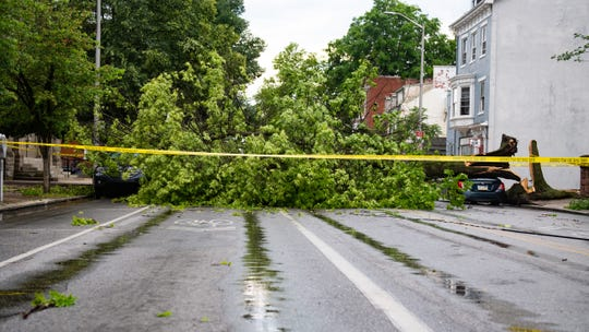 A tree on the 400 block of W. Market St. fell onto two parked vehicles during a storm that whipped through York County on Wednesday, May 29, 2019.