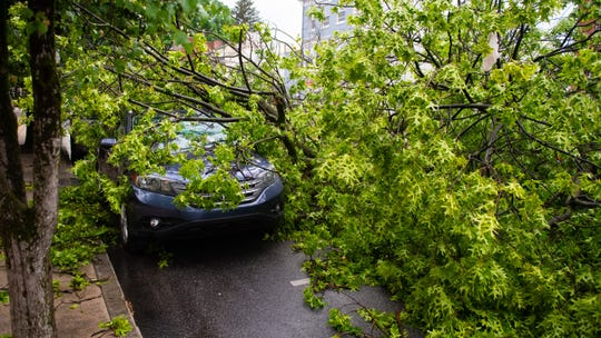The SUV as covered by the branches and leaves of the tree, Wednesday, May 29, 2019.