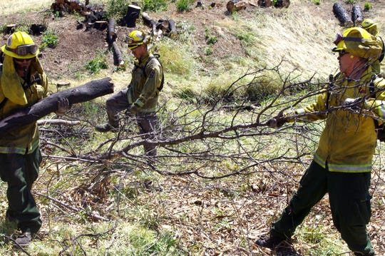 A National Guard crew thins trees as part of a fire prevention project along Lower Springs Road west of Redding.