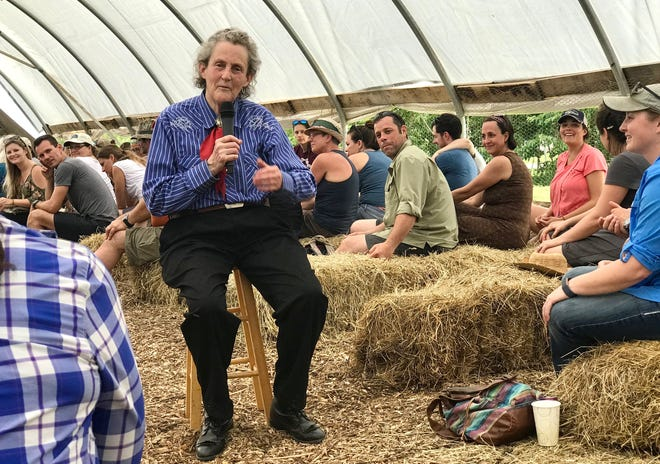 A day with Temple Grandin on Polyface Farms in Swoope, Virginia, on Wednesday, May 29, 2019. Grandin sits inside the hoop house to share her wisdom and personal experience of autism to over 300 people who came to the farm.