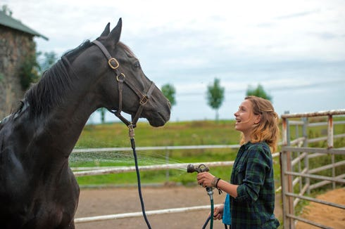 """Watch the German film """"Rock My Heart"""" about a brave girl and unruly stallion on June 7."""