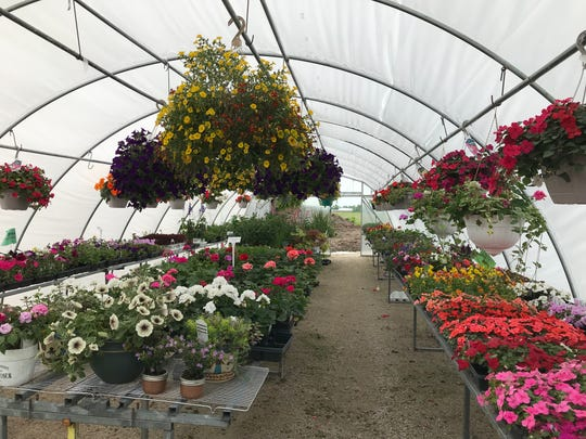 Rose's Greenhouse in Harrison