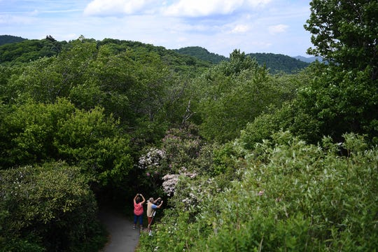 A couple takes photos at Graveyard Fields on the Blue Ridge Parkway on May 30, 2019.