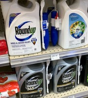 Although controversial, glyphosate is a  legal ingredient in many common herbicides.