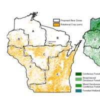 Wisconsin DNR board approves bear plan, prohibits some hound