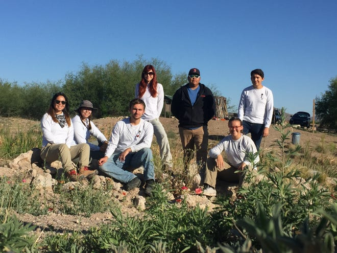 At Southwest Environmental Center's La Mancha Wetland Project, a crew of six local youth gained paid work experience improving habitat for native plants and animals.