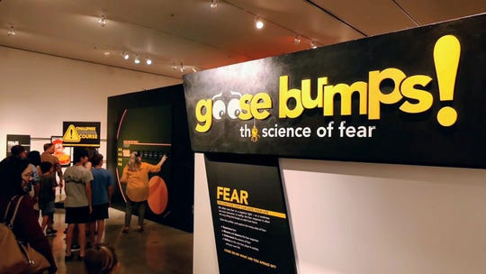 "The ""Goose Bumps"" exhibit at Turtle Bay looks at the many aspects of fear and offers a series of fun interactive challenges."