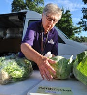 Hospice of Wichita Falls volunteer Marge Alexander helps organize fresh goods for the Farmer's Market at Hospice Friday morning.