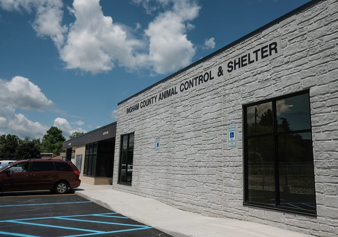 The new Ingham County Animal Control & Shelter is located at 600 Buhl St., not far from the old shelter on Curtis Street. Sunday, June 2, 2019.