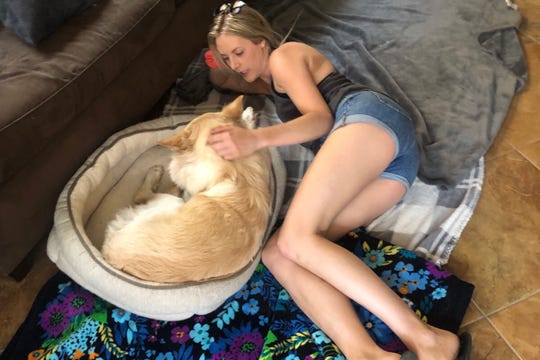 Nellie's owner, Amanda, comforts her at home.