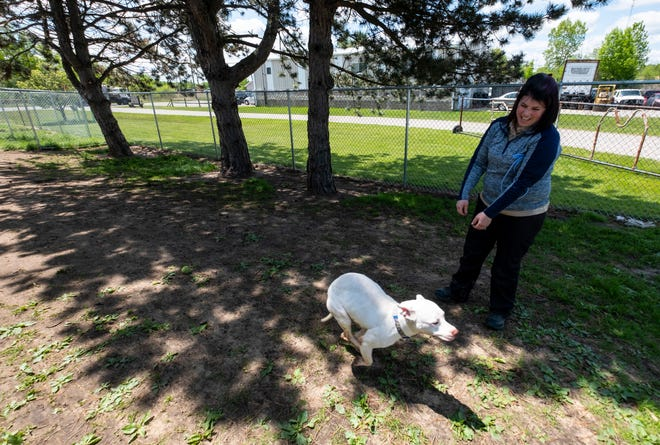 St. Clair County Animal Control Director Erika Stroman plays with Patty, a 2-year-old American bulldog mix, Monday, June 3, 2019, at St. Clair County Animal Control.