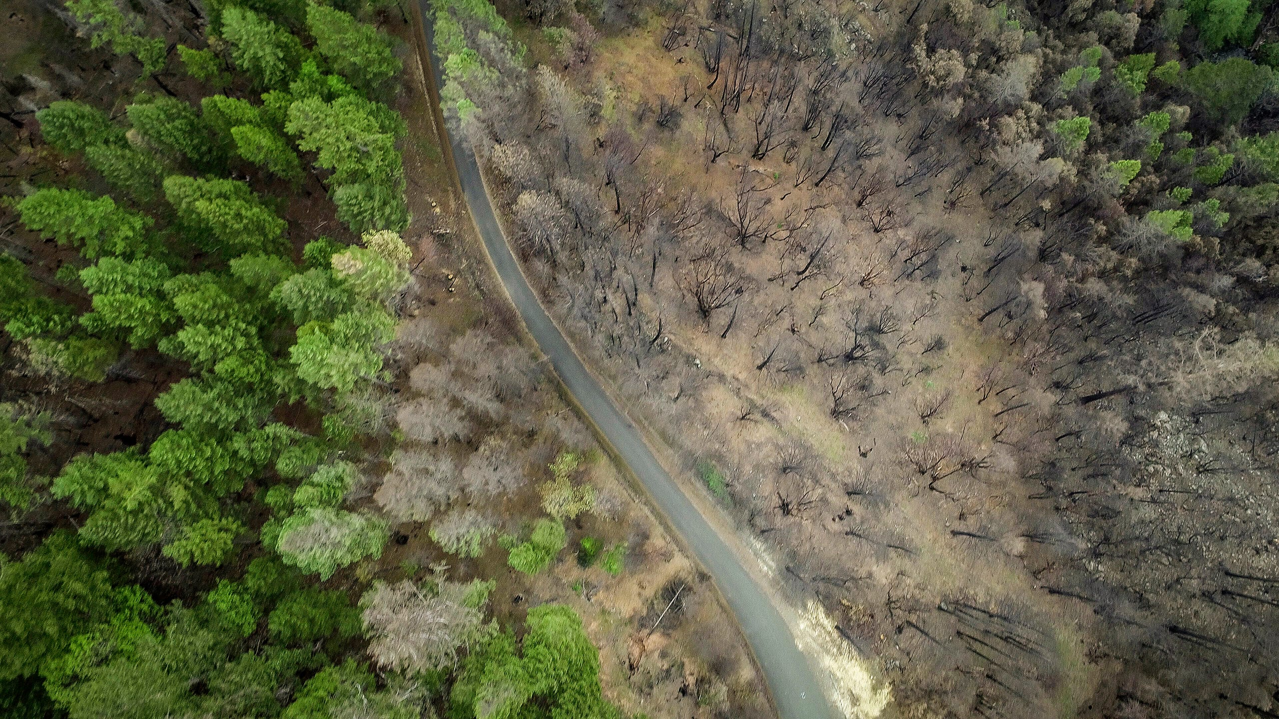 Burn scars from the Taylor Creek Fire from 2018 can be seen along Taylor Creek Road near Merlin. The fire burned thousands of acres and along with other fires in the area caused large revenue losses for businesses along the popular Rogue River tourist area. Nearby Merlin tops a list of areas most at risk of a devastating wildlife like those in Redding and Paradise California in 2018.