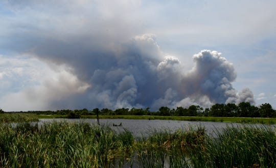 Huge plumes of smoke as seen from the Viera wetlands on Tuesday afternoon of a controlled burn of 8,000 acres underway west of Brevard County, near Lake Winder.