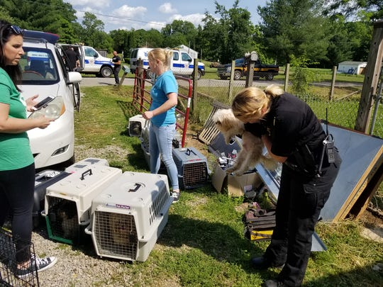 Local humane societies partnered on Monday during an animal rescue that found at least 60 dogs inside a Pike County home.