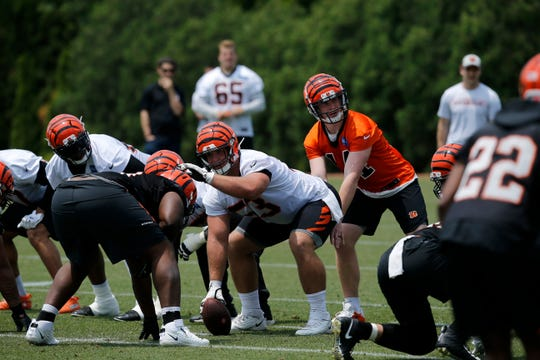 Cincinnati Bengals center Billy Price (53) calls out the defense before the snap during an OTA practice at the Paul Brown Stadium training field in downtown Cincinnati on Tuesday, June 4, 2019.