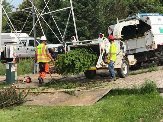 A crew from Nelson Tree Service  removes trees Monday from the Roger and Linda Sarauer in the town of Empire, per instructions from American Transmission Company. The couple says 31 trees they planted were removed from an electrical easement that runs through their property.