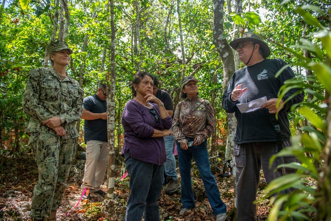 Jim McConnell, Serianthes nelsonii principal investigator of the Guam Plant Extinction Prevention Program, describes the tree to Rear Adm. Shoshana Chatfield, former commander of Joint Region Marianas, left, and Guam Gov. Lou Leon Guerrero, center in this file photo..