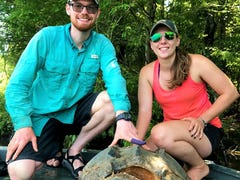 'He was an absolute monster': Mississippi researchers share snapping turtle finds