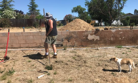 Halleck's pet terrier, Dog, watches as he works his property on Monday, June 3, 2019.
