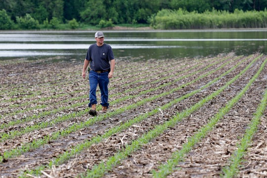 Jeff Jorgenson looks over a partially flooded field he farms near Shenandoah, Iowa, on May 29. About a quarter of his land was lost this year to Missouri River flooding.