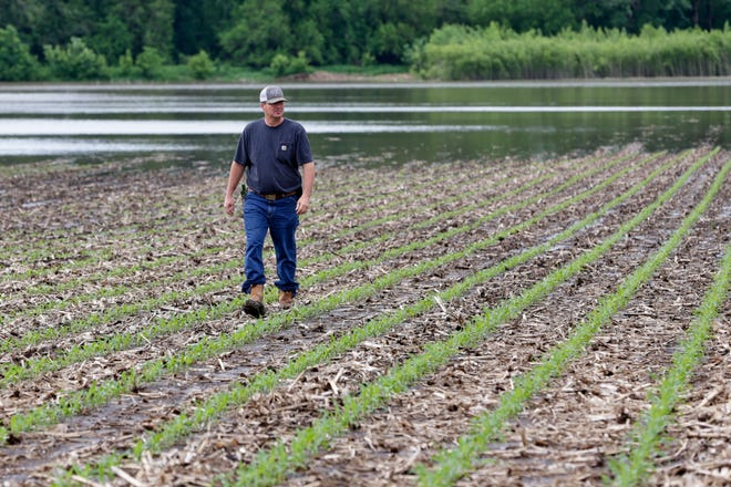 Jeff Jorgenson looks over a partially flooded field he farms near Shenandoah, Iowa. About a quarter of his land was lost this year to Missouri River flooding, and much of his remaining property has been inundated with heavy rain and water from the neighboring Nishnabotna River.