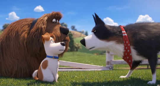 "Duke (left, voiced by Eric Stonestreet) and Max (Patton Oswalt) have a lot to learn from no-nonsense farm dog Rooster (Harrison Ford) in ""The Secret Life of Pets 2."""