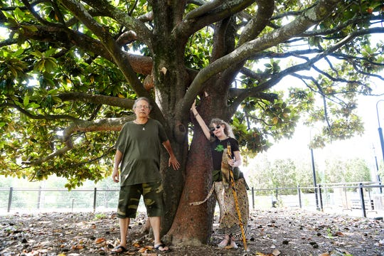 Steve Rasmussen, pictured with Lady Passion, camped under this large magnolia tree near Pack Square Park in 2008 to save it from a planned condominium complex.