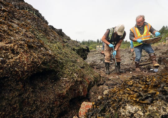 Environmental scientists with Paul Robinette, left, and Iain Wingard collect a sediment sample from the shoreline of Bainbridge Island's Blakely Harbor Park on Wednesday. The Department of Ecology is doing the soil testing as it prepares to do a cleanup at the site of the old Port Blakely mill, which at its height, was one of the largest sawmills on the Pacific Coast. Earlier sampling has confirmed the presence of some toxics.