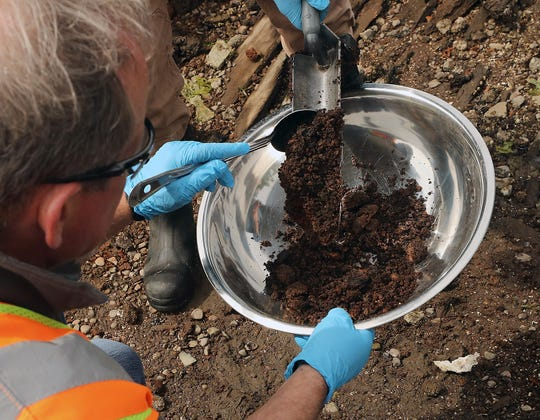 Environmental scientist Iain Wingard uses a spoon to scrape the sample out of the shovel at Bainbridge Island's Blakely Harbor Park on Wednesday.