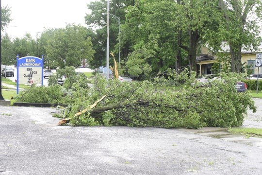 Dozens of trees fell during the storm that hit Galion late Wednesday afternoon.