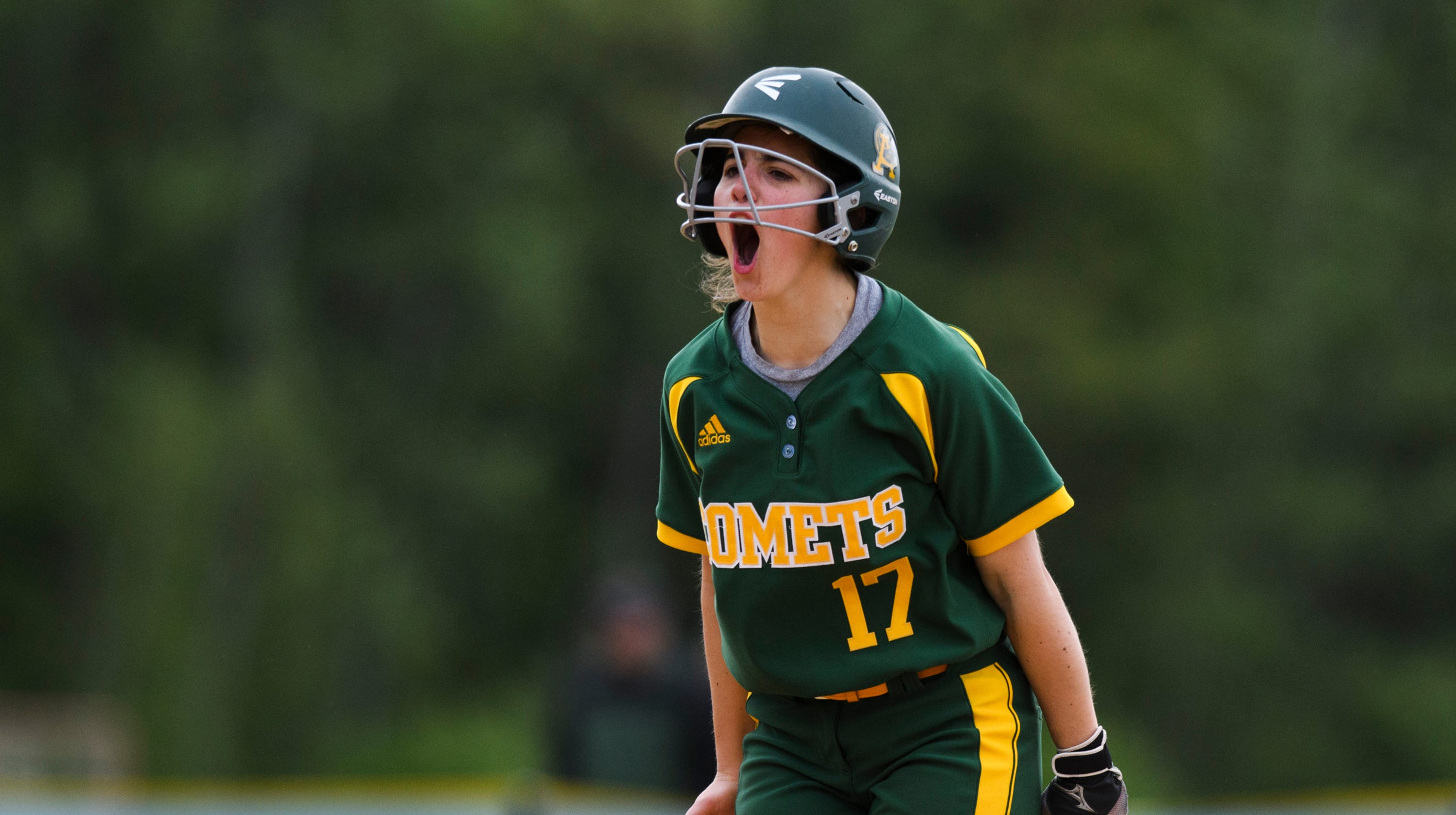 Vermont H.S. Softball: Coaches' All-league Teams For 2019