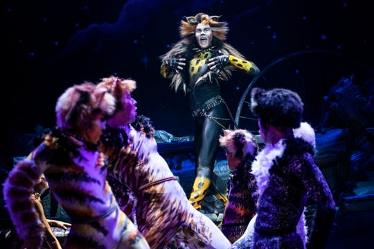 """McGee Maddox plays the role of Rum Tug Tugger, a sassy and raucous character who is featured in one of the most memorable musical numbers in """"Cats,"""" playing at the Aronoff Center June 11-16."""