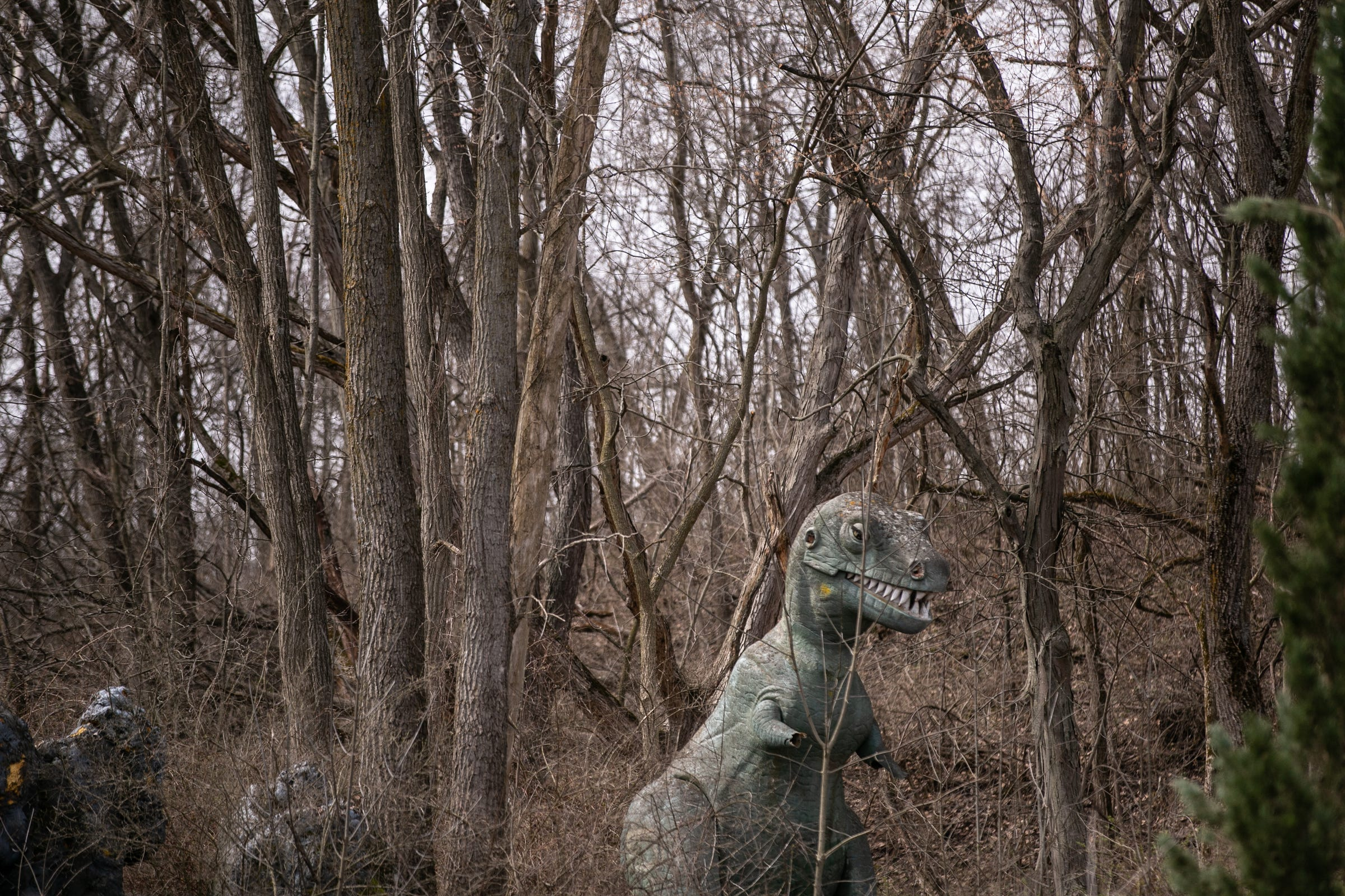 A large Tyrannosaurus Rex statue made of fiberglass stands in the woods at Prehistoric Forest, a once-popular tourist attraction in Irish Hills, as seen on Tuesday, April 16, 2019.