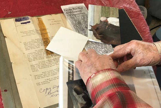 At his Geyser home, Tim McAllister sorts through photos of the horses bred on his ranch and World War II mementos.