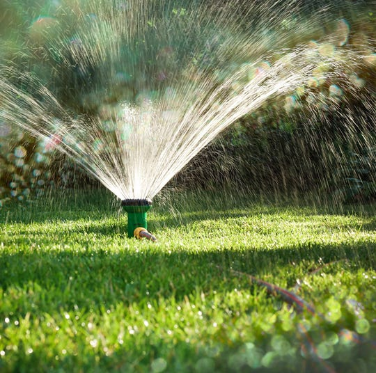 Grass Sprinkler in Action
