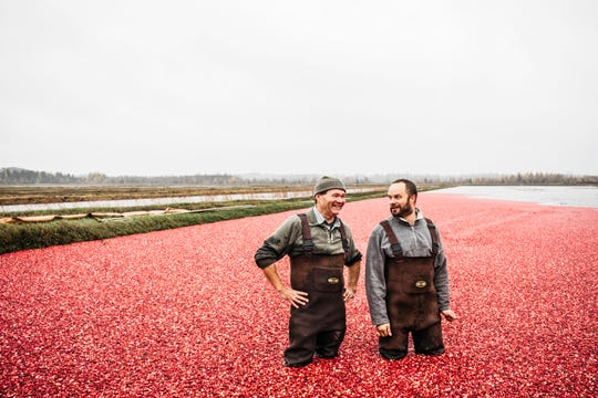 Celebrate The Cranberry This Summer At These 3 Farms
